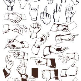 Руки в векторе № 001: кисти рук в векторе