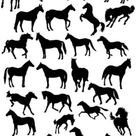 Silhouettes of horses # 01 download free