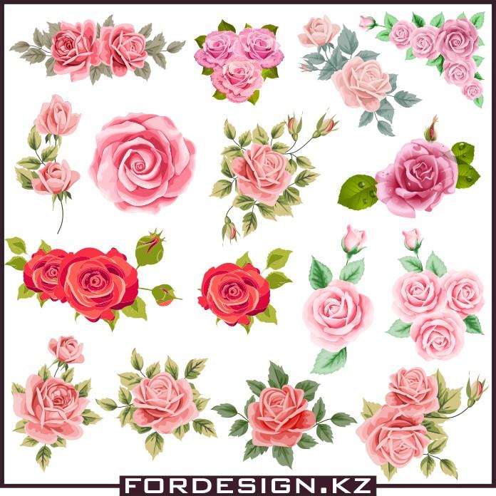 роза вектор скачать, красная роза вектор, алая роза вектор, розы картинки, векторные розы