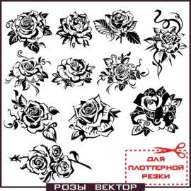Черно белые розы векторный клипарт скачать бесплатно