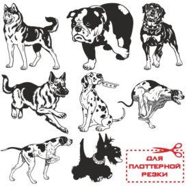 Векторные изображения разных собак