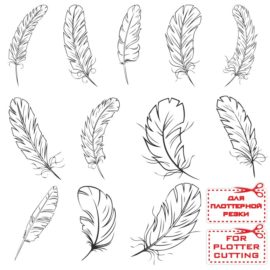 Collection of vector feathers: feather vectors free