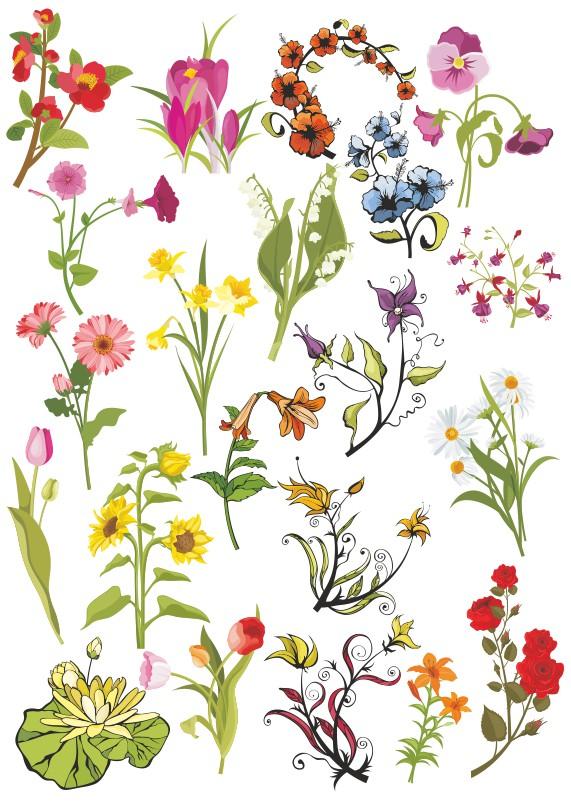 векторные цветы, цветы векторный клипарт,векторные цветы скачать