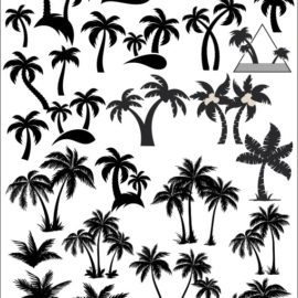 Tree silhouette: Vector palm trees: