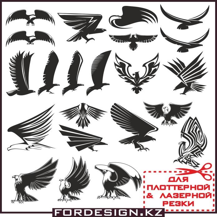 орел вектор, векторный орел, птицы в векторе