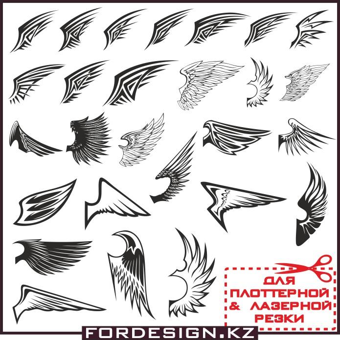 крылья вектор, векторные крылья, птица вектор, макеты для плоттерной резки