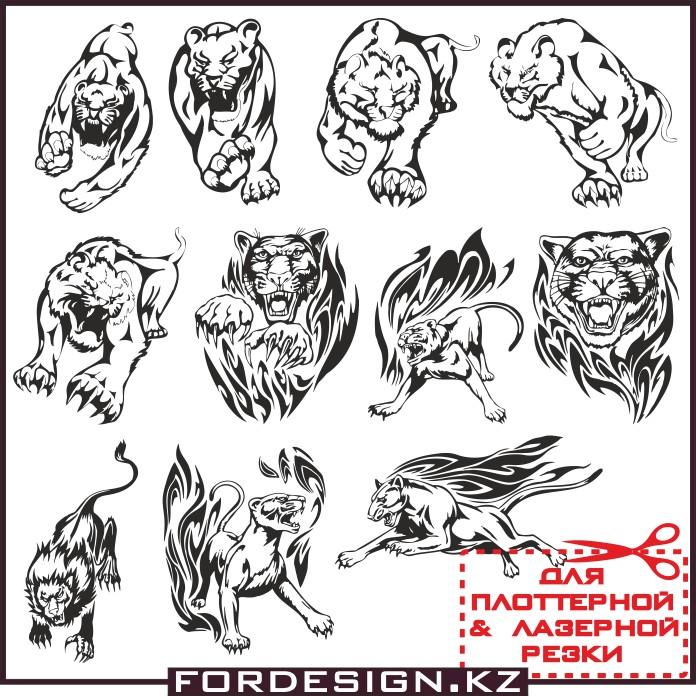 Векторный лев, животные вектор, львица вектор, львы картинки