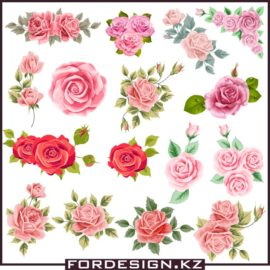Rose vector download: Beautiful vector roses.
